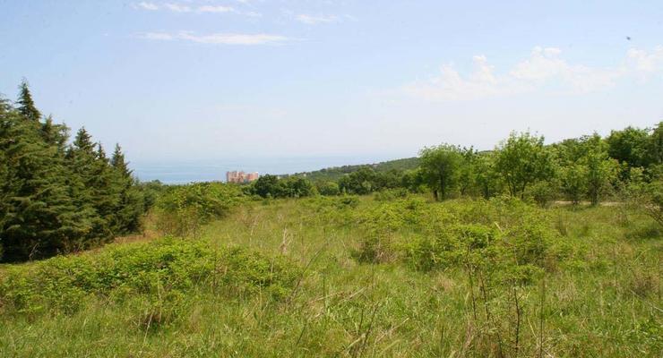 На сайте Госгеокадастра будут обнародованы данные о собственниках земель