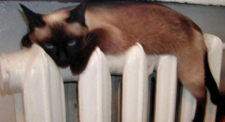 Азаров решил отключать тепло в домах и квартиры для выбивания долгов за газ