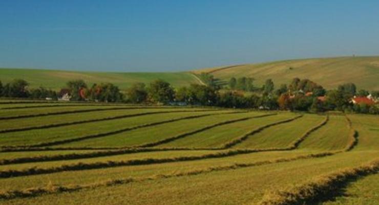 Янукович хочет продавать землю уже в 2012 году