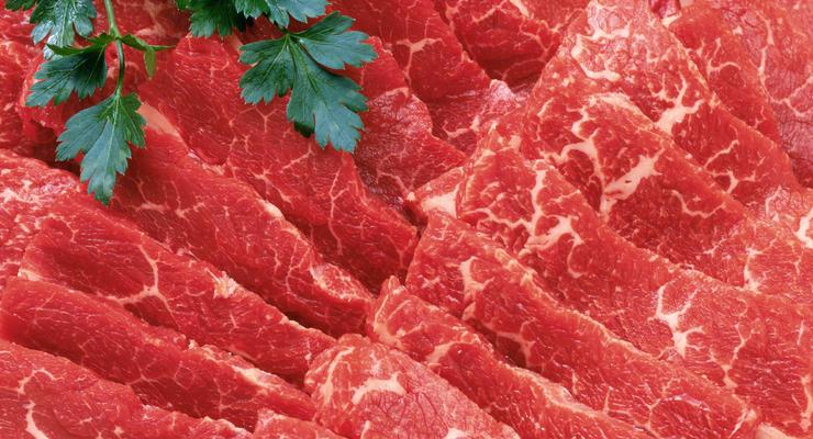 В Киеве будут продавать мясо крокодила оптом