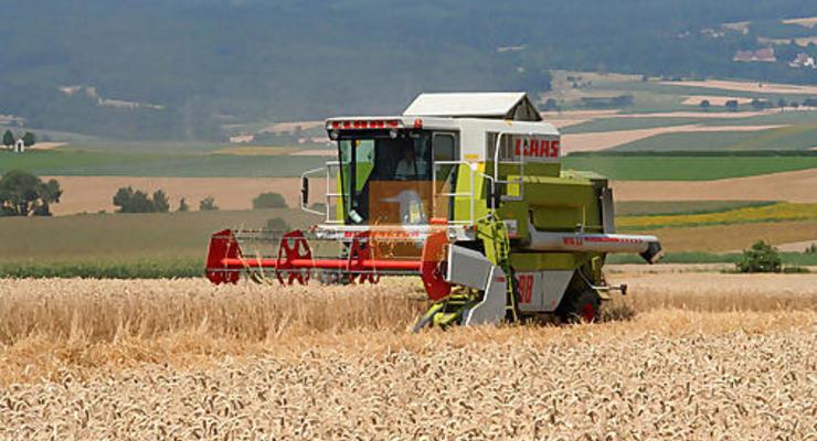 Катар хочет купить в Украине землю для выращивания зерна