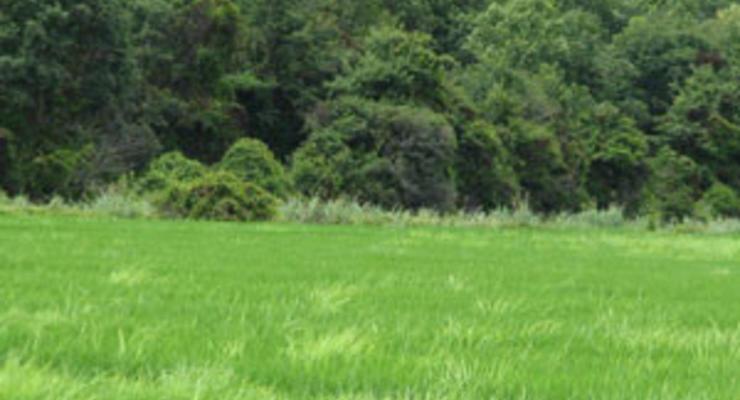 Земельное наследство и его оформление
