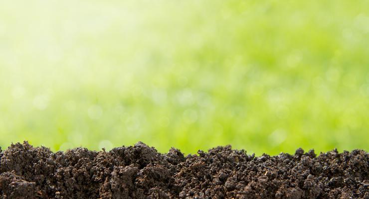 В Украине хотят взимать налог с каждого гектара земли