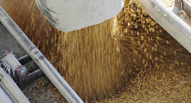 Сотрудники ГФС провели обыск у одесских зернотрейдеров