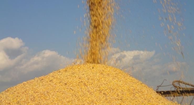 Украина может лишиться статуса крупнейшего поставщика кукурузы в Китай