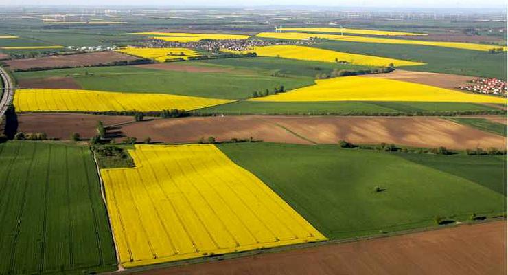 Минагрополитики выступает за поэтапный запуск рынка земли