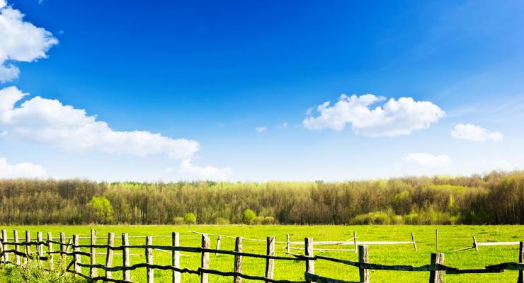 Продажа прав на аренду земли: Кто в Украине получит выгоду
