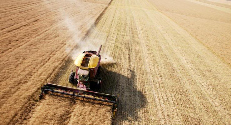 Аграрный сектор показал свыше 40% национального экспорта