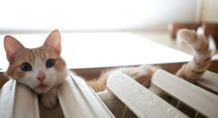 Как отключить централизованное отопление в квартире