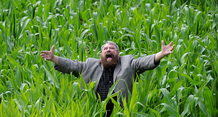 Земельные богатства: ТОП-15 современных помещиков Украины