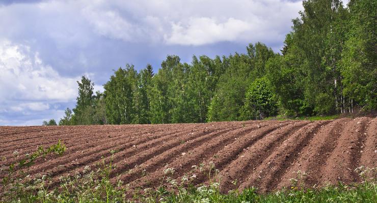 Кабмин дал финансовую оценку земельной реформы