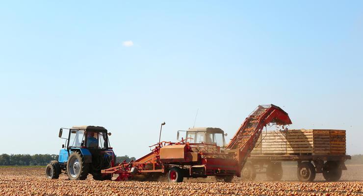 МВФ откажется от требования запустить рынок земли в Украине - СМИ