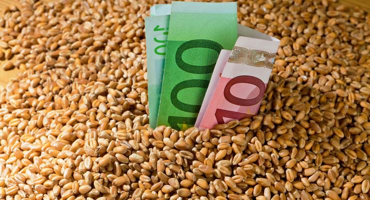 Экспорт зерна из Украины может упасть до 15%