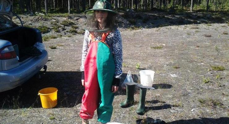 Легкие деньги: как работается украинцам в лесах Швеции