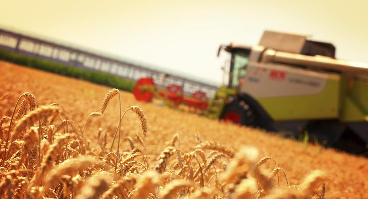 Украина соберет второй по величине урожай в своей истории
