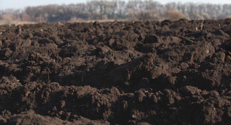 Комитет Рады порекомендовал продлить мораторий на продажу земли