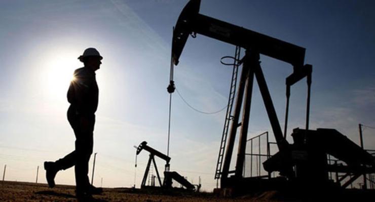 Коррупция в Госгеонедра блокирует энергонезависимость Украины – СМИ