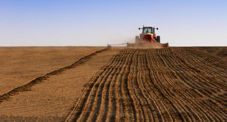 В Крыму заговорили о возможной гибели урожая