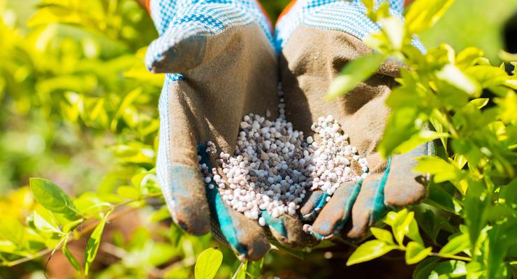 Крупный российский поставщик удобрений уходит из Украины - СМИ