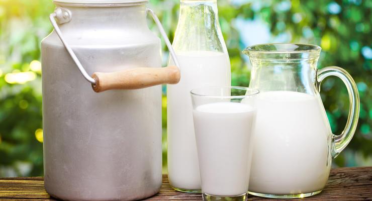 ТОП-5 регионов Украины, где на зарплату можно купить больше всего молока