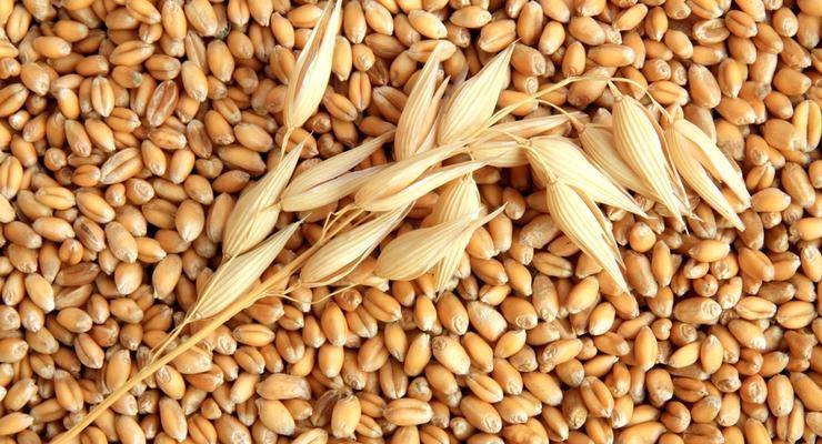 Сколько зерна экспортировала Украина
