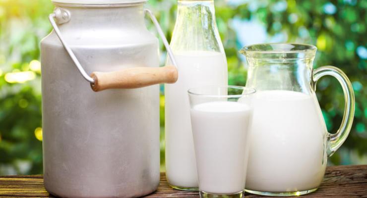 ТОП-5 регионов Украины с самой дешевой молочной продукцией