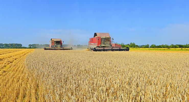 Украинские аграрии перевыполнили планируемый урожай по зерну