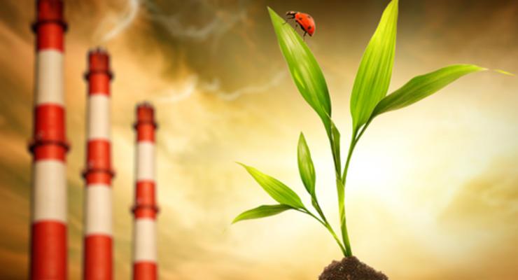 ЕБРР планирует запуск программы по биоэнергетике на 70-80 млн евро