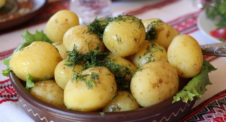В Украине подешевел картофель
