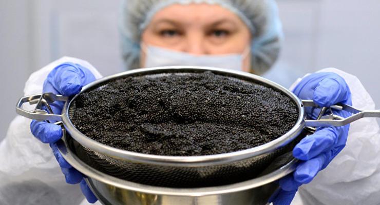 Украина удвоит производство черной икры