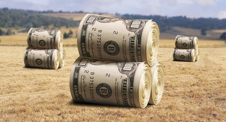 Стала известна средняя цена на землю в регионах Украины