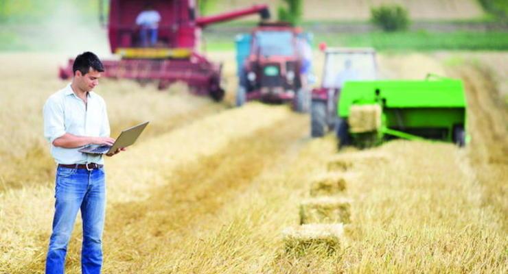 Украина экспортировала зерновых более чем 31,7 млн тонн