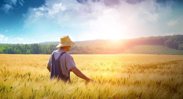 Зарплаты аграриев за год выросли на 22%