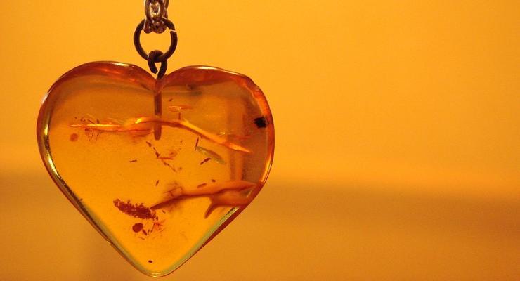 В Украине ввели налог на добычу янтаря