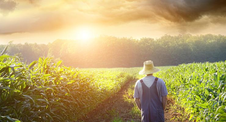 Тема рынка земли пока не актуальна, - социолог