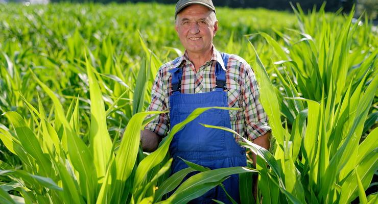 Кабмин должен компенсировать убытки фермеров - эксперт