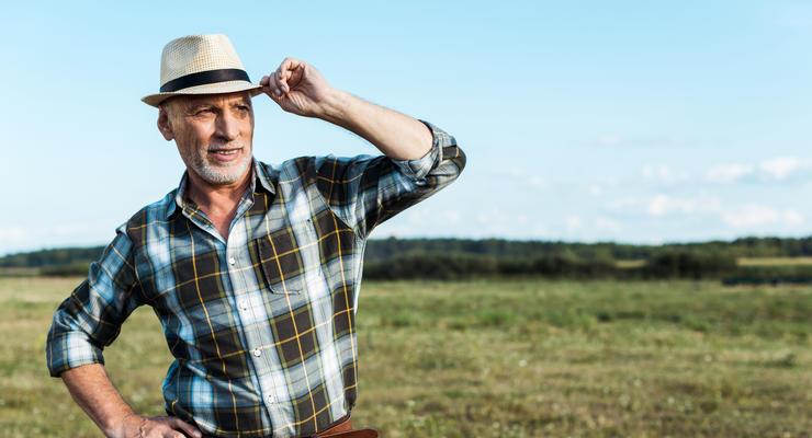 Фермеры получат компенсации за потерю посевов из-за засухи