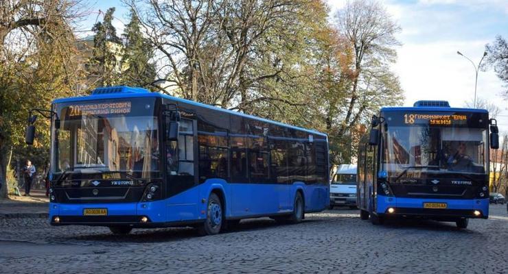 Мининфраструктуры предложило новую модель общественного транспорта