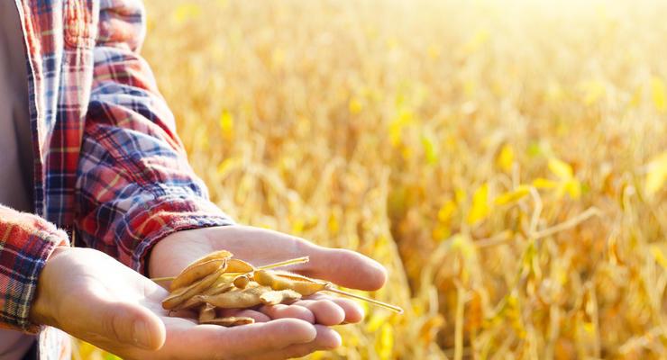 Урожай в Украине в 2020 году стал самым минимальным за три года
