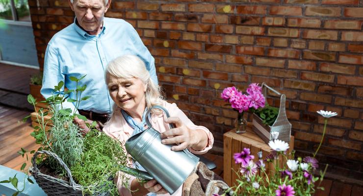 Минсоцполитики подтвердило повышение пенсий - но есть нюансы
