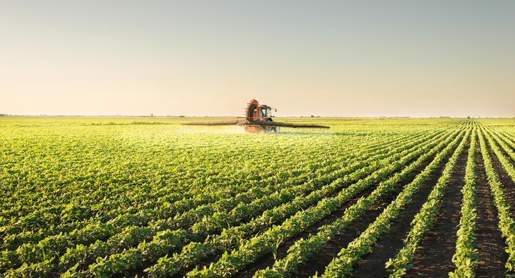 """Новый земельный закон в Украине 2021: К домам будут """"автоматом"""" прилагаться участки земли"""