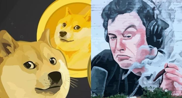 Илон Маск спровоцировал рост курса  Dogecoin почти в 20 раз