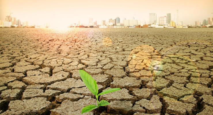Изменение глобального климата: Чем это плохо для Украины