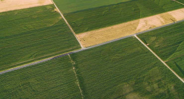 60% украинцев не хотят продавать свою землю при запуске земельного рынка: Опрос
