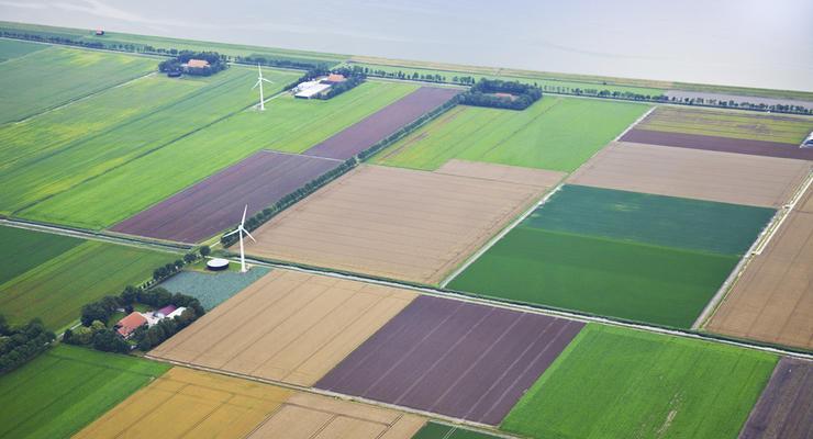 Аренда сельхоз земли в Украине дорожает
