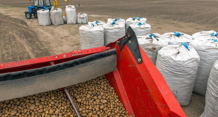 Налоги для аграриев: Власти планируют вдвое увеличить ставку единого налога
