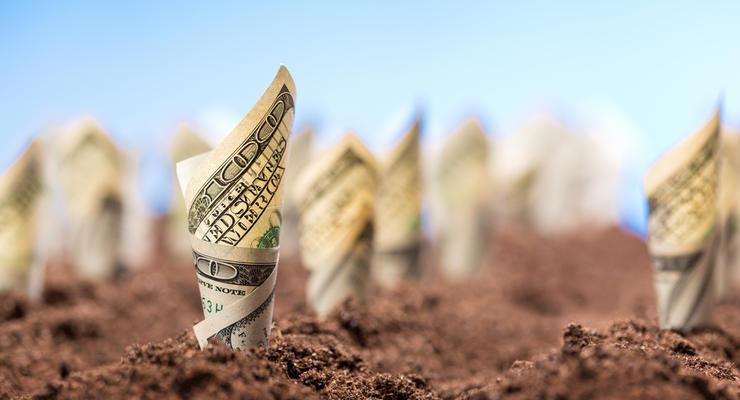 Сколько будет стоить один гектар после открытия рынка: Эксперт назвал цены