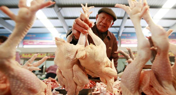 Цены на курятину в Украине сильно поднялись: сколько стоит килограмм мяса