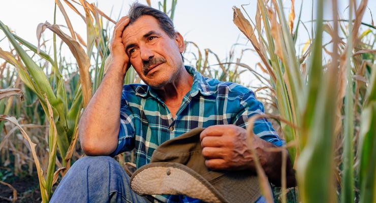 Кабмин намерен ввести новый налог на землю в Украине