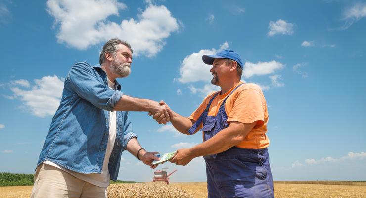 Украинцы активно продают землю: Сколько заключили сделок после отмены моратория